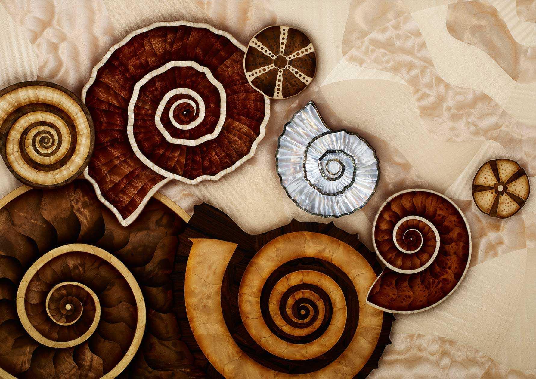 Silverlining Furniture Ammonite Shore
